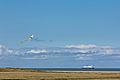 DFDS Delft Seaways, kite on a beach near Gravelines-7891.jpg