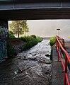 Dalejský potok, pod rampami u Barrandovského mostu (01).jpg