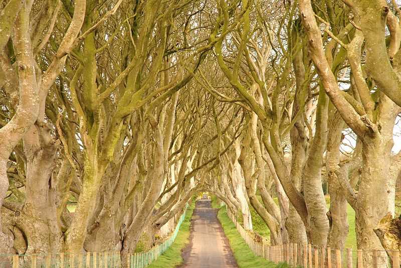 cenários de game of thrones na irlanda