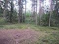 Degučių sen., Lithuania - panoramio (203).jpg