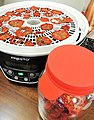 Dehydrating and conditioning tomatoes.jpg