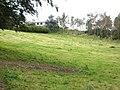 Deil's Dike - geograph.org.uk - 568872.jpg