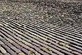 Den Helder 09 2013 - panoramio (4).jpg