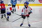 Den s hokejem Orlová 03.jpg