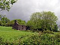 Derelict building on Farmland near Bantry - geograph.org.uk - 14841.jpg