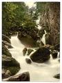 Derwentwater, Lodore Falls, Lake District, England-LCCN2002696855.tif