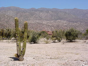 Climatic regions of Argentina - Arid and hot weather predominate at the lower altitudes in the Andean valleys in northwest Argentina.