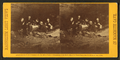 Dining in The Great Relief, from Robert N. Dennis collection of stereoscopic views.png