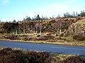 Disused quarry - geograph.org.uk - 1069048.jpg
