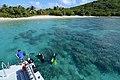 Diving Culebra.jpg