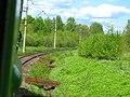 Dmitrovsky District, Moscow Oblast, Russia - panoramio (67).jpg