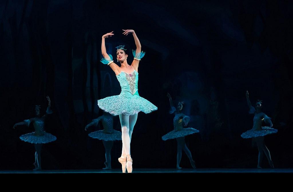 Le ballet de la merlaison - 5 9