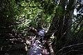 Dove Lake Circuit Walking Track, Cradle Mountain - Lake St Clair National Park 19.jpg