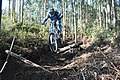 Downhill - Monchique (11393649475).jpg