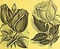 Dreer's garden calendar for 1887 (1887) (21024514712).jpg
