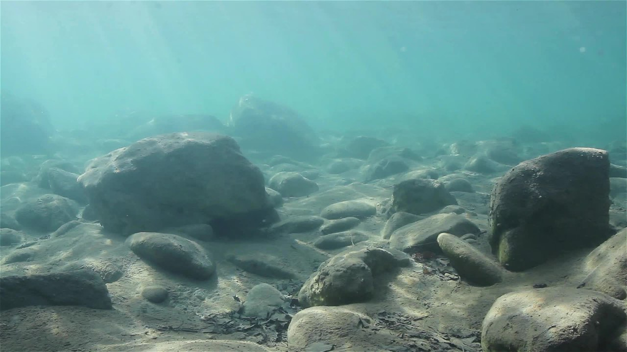 Image result for rocks at the bottom of the ocean