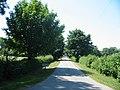 Driveway to Sinnington Lodge - geograph.org.uk - 204407.jpg
