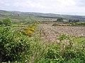 Drung Townland - geograph.org.uk - 1341422.jpg