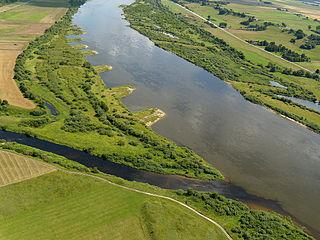 Слияние рек Дубиса и Нямунас. Foto:Watas
