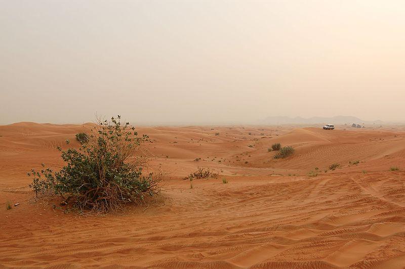 File:Dune bashing, Dubai, 2007 (07).JPG