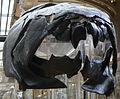 Dunkleosteus skull front.JPG