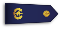 Dutch Police Rank Brigadier.png
