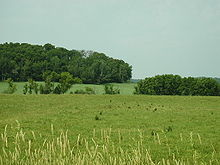 Eau Claire County Wisconsin B.jpg