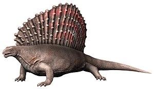 Edaphosaurus - Edaphosaurus pogonias