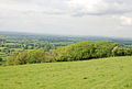 Edge of Ibberton Hill - geograph.org.uk - 444560.jpg