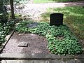 Ehrengrab Auguste Förster (Hauptfriedhof Kassel).jpg