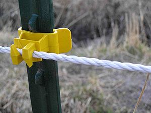 Electric fence - Detail of an electric fence material made of synthetic cord with metal interwoven through it, attached to a steel fence post with a plastic insulator. This material is more visible than wire, but most often used for temporary fencing.