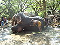 Elephant Bath.JPG