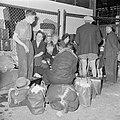 Emigranten (oliem) wachten na aankomst in Israel zittend op hun bagage op hun r…, Bestanddeelnr 255-1156.jpg