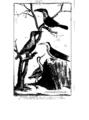 Encyclopedie volume 5-074.png