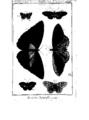 Encyclopedie volume 5-134.png