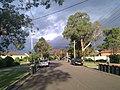 Engadine NSW 2233, Australia - panoramio (35).jpg