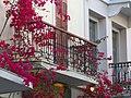 Ermoupoli, Greece - panoramio (26).jpg