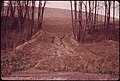 Erosion Created A Mudslide Which Pushed through A Stand of Trees Off Route 146. 10-1973 (3769858496).jpg