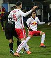 FC Liefering gegen SV Horn (November 2016) 34.jpg