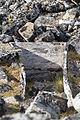 Fair Haven Sallyhamna 92 dutch smeeren grave rk 93666.JPG