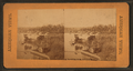 Fairmount Park, Philadelphia. (Park steamer at landing.), from Robert N. Dennis collection of stereoscopic views.png