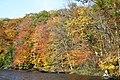 Fall Beauty - panoramio.jpg