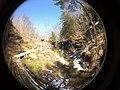 Fall Run Park in Shaler Township, late winter - 5.jpeg