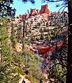Falls View, Mossy Cave Trail, UT9-09 (15039379184).jpg