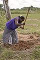 FarmingZambia.jpg