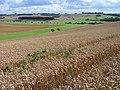 Farmland, Upper Lambourn - geograph.org.uk - 1575354.jpg
