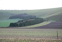 Farmland by Swallowcliffe - geograph.org.uk - 353444.jpg