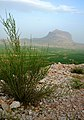 Fars - Dorudzan - Dashtak - panoramio (1).jpg