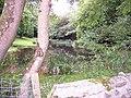 Felin Bontbren pond - geograph.org.uk - 56976.jpg