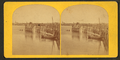 Ferry landing, at Cape Elizabeth, Portland, Me, from Robert N. Dennis collection of stereoscopic views 2.png